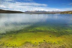 La nieve capsuló las altas montañas reflejadas en el lago Chungara Imagen de archivo