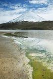La nieve capsuló las altas montañas reflejadas en el lago Chungara Fotos de archivo libres de regalías