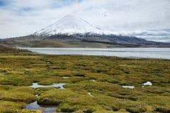 La nieve capsuló las altas montañas reflejadas en el lago Chungara Foto de archivo