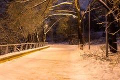 La nieve de la noche del invierno cae en el parque fotografía de archivo libre de regalías