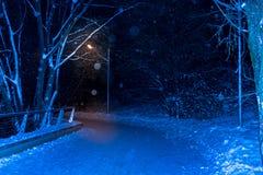 La nieve de la noche del invierno cae en el parque imagen de archivo libre de regalías