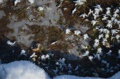 La nieve del hielo protagoniza en el top del lago congelado Fotos de archivo libres de regalías