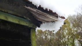 La nieve derrite de los tejados y de los goteos abajo en la primavera almacen de video