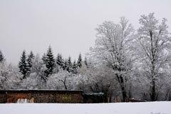 La nieve en Schwangau, Alemania Foto de archivo libre de regalías