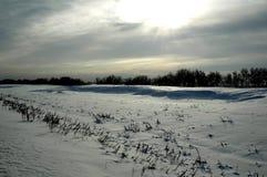 La nieve es viento y sol Fotos de archivo libres de regalías