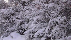 La nieve est? cayendo almacen de metraje de vídeo