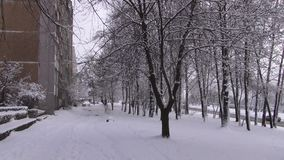 La nieve est? cayendo metrajes