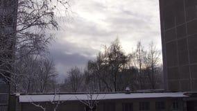 La nieve est? cayendo almacen de video