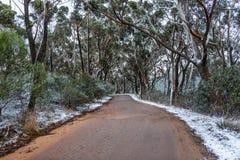 La nieve recogió en el lado de la pista que llevaba a Lithgows H Fotos de archivo