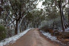 La nieve recogió en el lado de la pista que llevaba a Lithgows H Fotografía de archivo libre de regalías