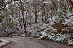 La nieve recogió en el lado de la pista que llevaba a Lithgows H Fotos de archivo libres de regalías