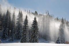 La nieve sopla a través de árboles Foto de archivo libre de regalías