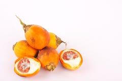 La noce di betel è utilizzata nelle tinture di tessuto industriali su fondo bianco isolato Immagini Stock Libere da Diritti