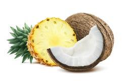 La noce di cocco dell'ananas collega la composizione 1 isolata sul backgro bianco immagine stock libera da diritti