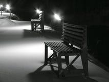 La noche está en un jardín público. Foto de archivo
