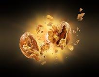 La noix éclate dans des morceaux dans l'obscurité image libre de droits