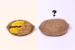 La noix d'or et ? Image stock