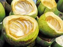 La noix de coco fraîche Shell Containers photo libre de droits