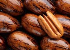 La noix de pécan se réduisent de moitié Images libres de droits