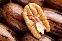 La noix de pécan se réduisent de moitié sur le fond Photos libres de droits