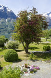 La Norvège - belle vue - jardin - Photo stock