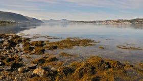 La Norvège du nord 51 Photos stock