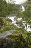 La Norvège - le parc national de Jostedalsbreen - nature Image stock