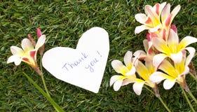 La note dans la forme du coeur avec des mots vous remercient photos stock