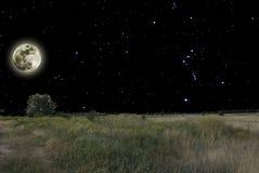 La notte è in steppa Fotografie Stock Libere da Diritti