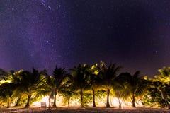 La notte ha sparato con le palme e la Via Lattea nel fondo, notte calda tropicale immagini stock