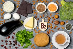 La nourriture est source de la vitamine B2 photographie stock libre de droits