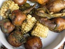 La nourriture péruvienne traditionnelle a appelé Pachamanca photos stock