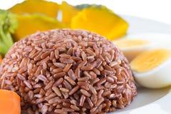 La nourriture végétarienne, contient le riz brut, oeuf, carotte, potiron et photographie stock