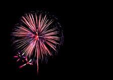 la nouvelle année de feux d'artifice célèbrent - le bel isolant coloré de feu d'artifice Photos stock
