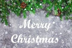 La nouvelle année impeccable s'embranche avec des cônes sur un fond concret gris Noël de nouvelle année Joyeux Noël photographie stock libre de droits