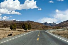 La nouvelle et belle route dans la montagne. photos stock