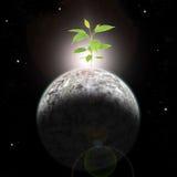 La nouvelle vie sortant d'une planète morte Image stock