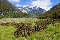 La Nouvelle Zélande scénique Image libre de droits