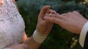 La novia apacible lleva el anillo del ` s del novio Ceremonia de boda almacen de metraje de vídeo