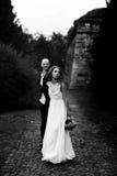 La novia camina a lo largo del paso en el parque que lleva a cabo la mano del novio fotografía de archivo