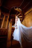 La novia de la belleza en vestido nupcial con el ramo y el cordón velan dentro Foto de archivo libre de regalías