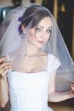 La novia de fascinación mira con el velo Fotos de archivo libres de regalías