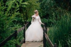 La novia en el vestido de boda está colocando al principio del puente a través del río en un bosque verde a la muchacha Foto de archivo