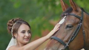 La novia encantadora frota ligeramente suavemente el caballo con su mano El caminar con un caballo en su día de boda metrajes