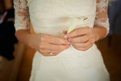 La novia está sosteniendo una flor, el boutonniere del novio foto de archivo