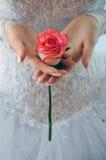La novia está sosteniendo una rosa Imagen de archivo libre de regalías