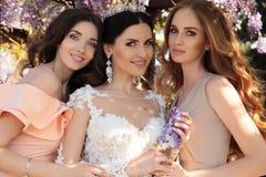 La novia magnífica en vestido de boda y la corona que presenta en verano del flor cultivan un huerto Imagenes de archivo