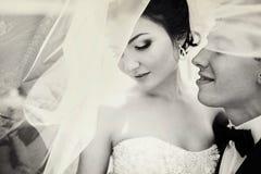 La novia mira abajo de la colocación con un novio debajo de velo Foto de archivo libre de regalías