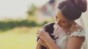 La novia morena encantadora conmovedor está sosteniendo un pequeño gatito en sus brazos El momento del día de boda almacen de video