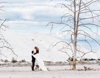 La novia se coloca en el tocón secado-para arriba y abraza al novio en el fondo del desierto con los árboles marchitados Foto de archivo libre de regalías